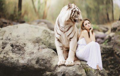 Gravida Asian Glamour Models Pictures